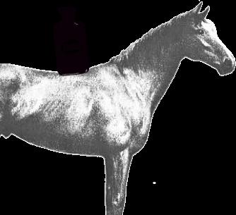 Casein 1929 1 VALIO